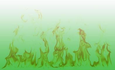 brandveiligheid groendak